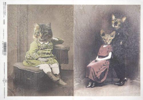 Rice Paper - Cat Couple_ITD_R1820