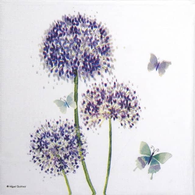 Paper Napkin - Nigel Quiney: Allium_PPD_1333655
