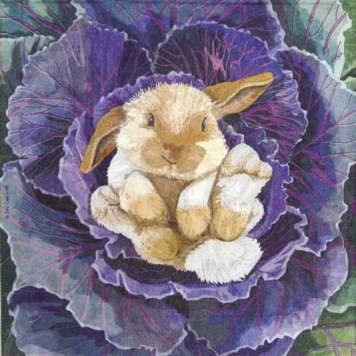Paper Napkin - Two Can Art: Babs the Bunny_PPD_1333749