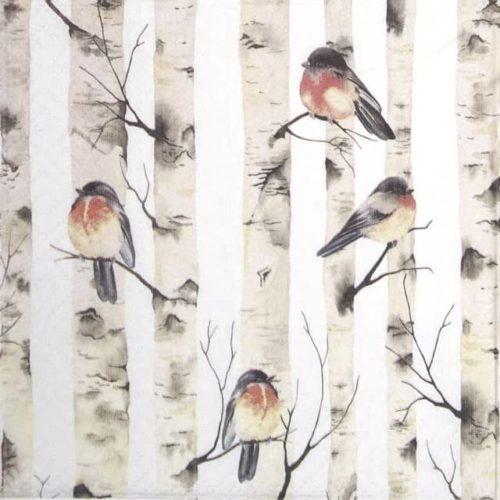Paper Napkin - Birch Trees_Paw_SDL230100