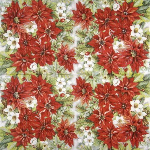 Paper Napkin - Poinsettia All Over