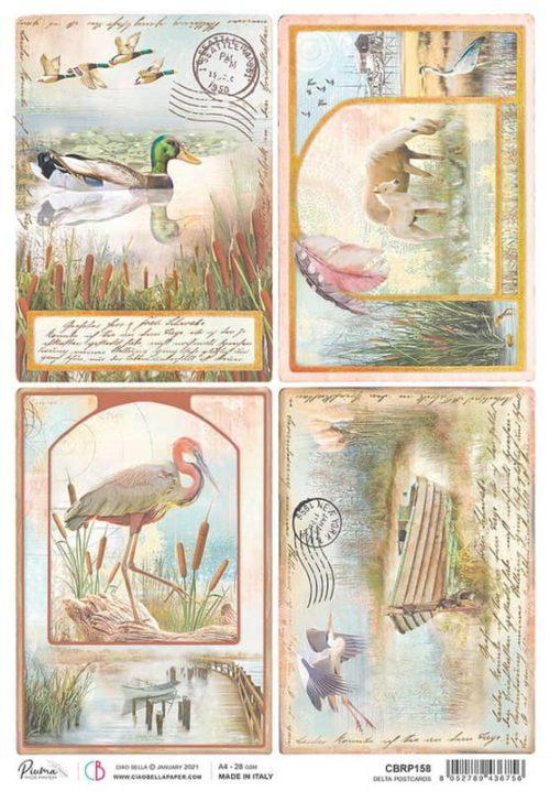 Rice Paper - Delta Postcards  - CBRP158