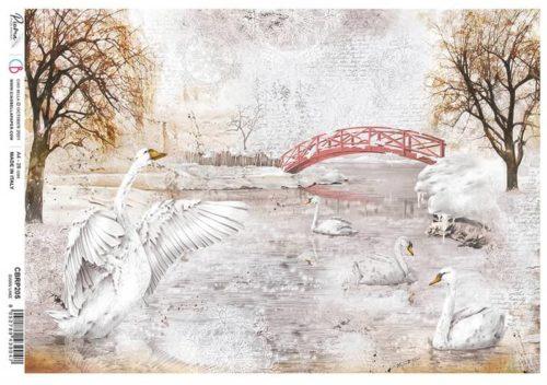 Rice Paper - Swan lake  - CBRP205